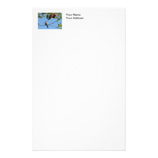 Bird Singing in an Apple Tree Stationery Paper