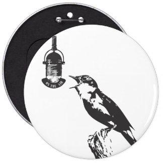 BIRD SINGING PINS