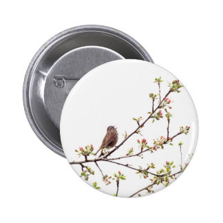Bird Singing with Spring Flowers Button