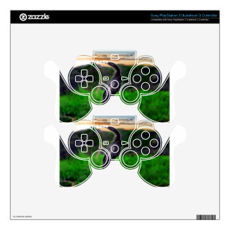 Bird Skins For PS3 Controllers