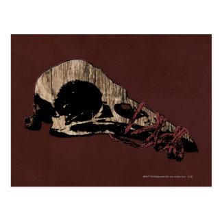Bird Skull Postcard