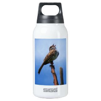 Bird Song Insulated Water Bottle