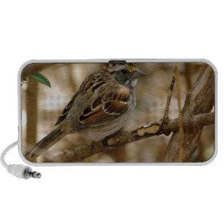 bird song iPhone speaker