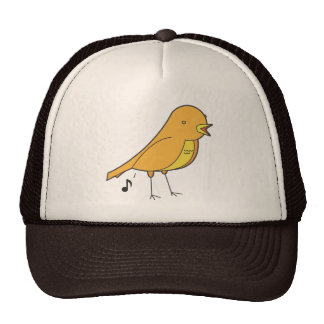 Bird songs mesh hat