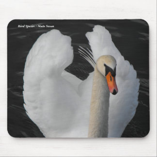 Bird Species : Mute Swan Mouse Mouse Pad