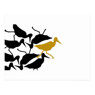 Bird Stew Odd Bird Out Postcard