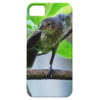 Bird Stretching on Magnolia Tree iPhone SE/5/5s Case