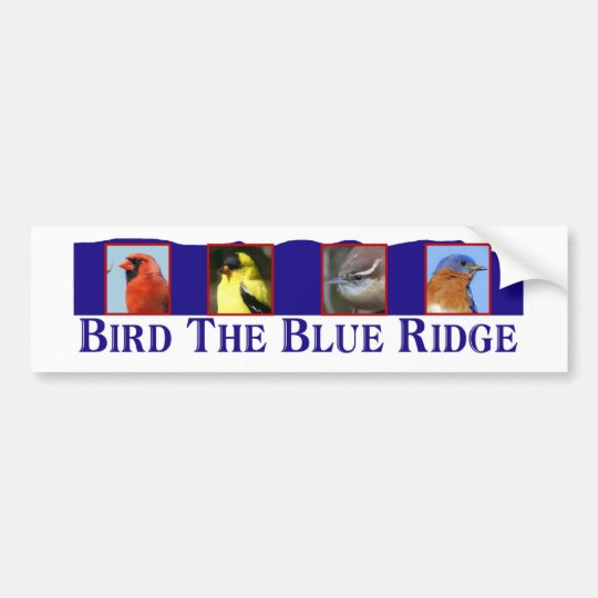 Bird the Blue Ridge Bumper Sticker