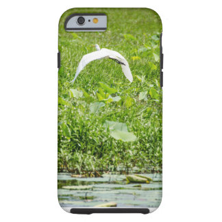 Bird Tough iPhone 6 Case