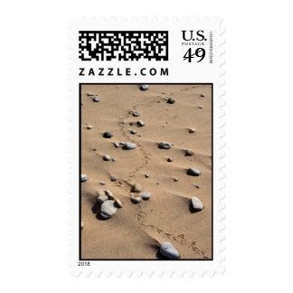 Bird Tracks & Rocks Postage