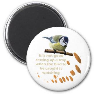 Bird Trap Series 2 Inch Round Magnet