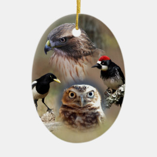 Bird Watcher Collage Ceramic Ornament