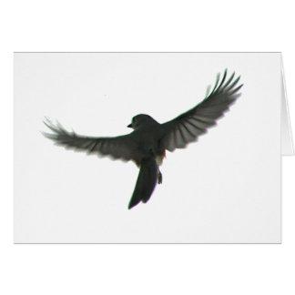 Bird Watcher Greeting Card