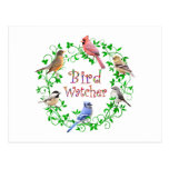 BIRD WATCHER POST CARDS
