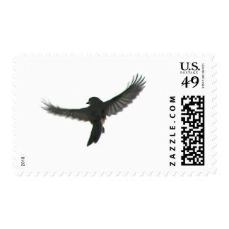 Bird Watcher Stamps