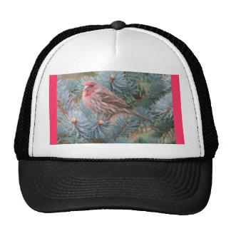 BIRD WATCHING CAP TRUCKER HAT
