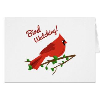 Bird Watching Greeting Cards