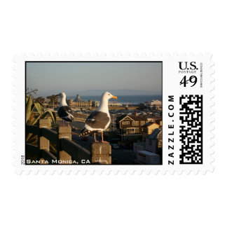 Bird Watching Postage