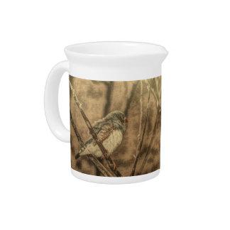 bird watching wilderness tree branches wild bird drink pitcher