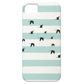 Bird White and blue striped iPhone 5 case Funda Para iPhone SE/5/5s