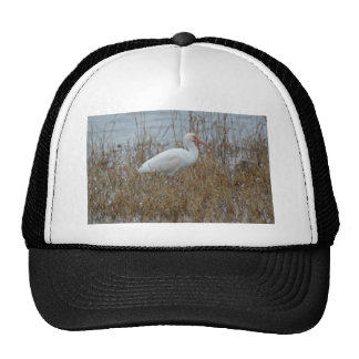 Bird White Ibis Nature Trucker Hat