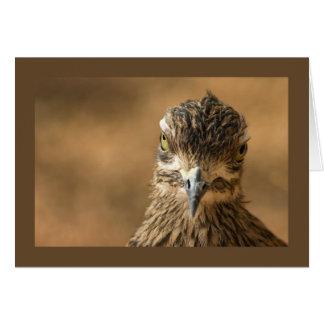 Bird...With Attitude Card