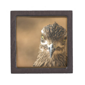Bird...With Attitude Premium Jewelry Box
