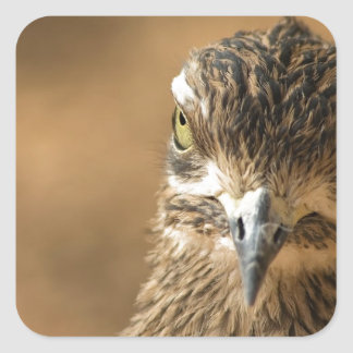 Bird...With Attitude Square Sticker