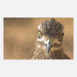 Bird...With Attitude Rectangle Sticker
