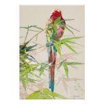 Bird with Bamboo Leaves Poster