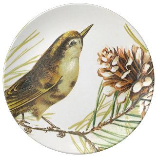 Bird with Fir Cone Vintage Illustration Porcelain Plate