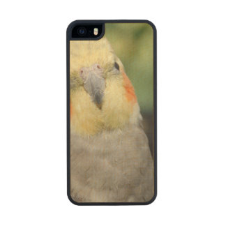 Bird Carved® Maple iPhone 5 Case