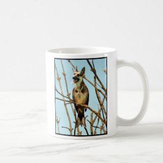 Birdagw mug