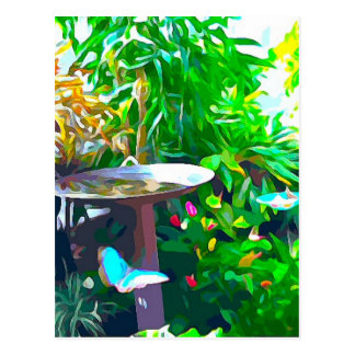 Birdbath in Key West Postcard