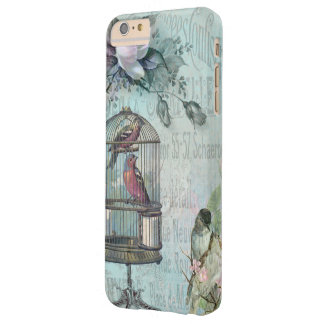 Birdcage Blossom Barely There iPhone 6 Plus Case