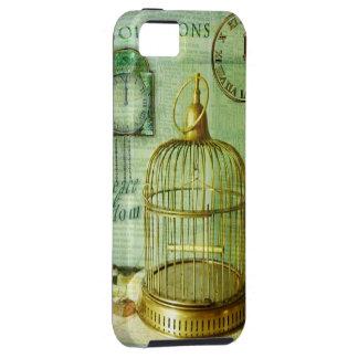 Birdcage de bronce iPhone 5 fundas