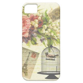 Birdcage elegante francés del Victorian del Funda Para iPhone SE/5/5s