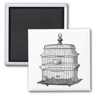 Birdcage Magnet