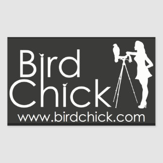 Birdchick Stickers