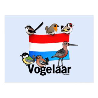 Birder holandés: Vogelaar Postales