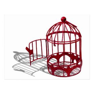 BirdHouse092110 Tarjetas Postales