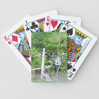 Birdhouse anudado árbol meridional rústico del pin baraja cartas de poker