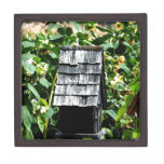 Birdhouse Caja De Regalo De Calidad