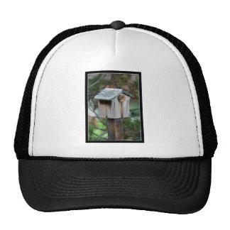 Birdhouse cap trucker hat