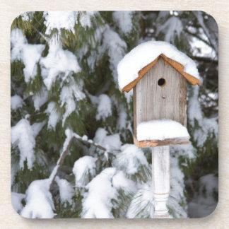 Birdhouse cerca del árbol de pino en invierno posavasos de bebidas