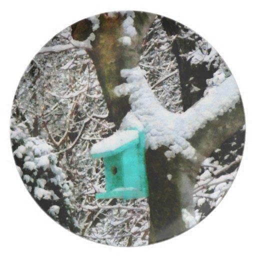 Birdhouse de la turquesa en invierno platos