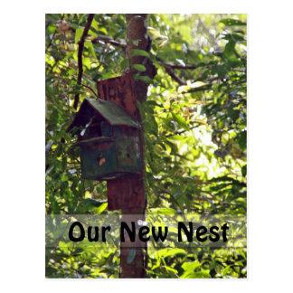 Birdhouse del bosque de la sol postal
