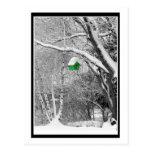 Birdhouse del invierno tarjetas postales