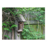 Birdhouse Impresiones