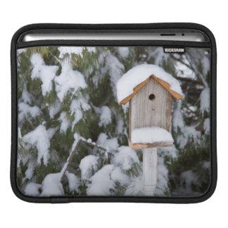Birdhouse near pine tree in winter iPad sleeve
